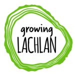 Growing Lachlan